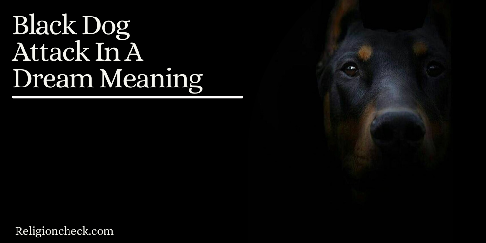 Black Dog Attack In A Dream Meaning