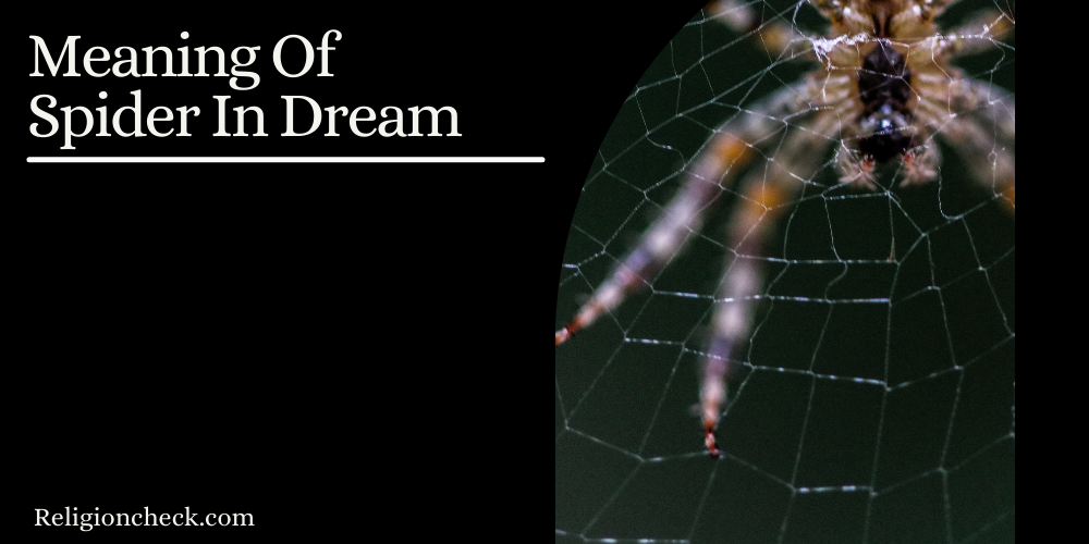 Meaning Of Spider In Dream